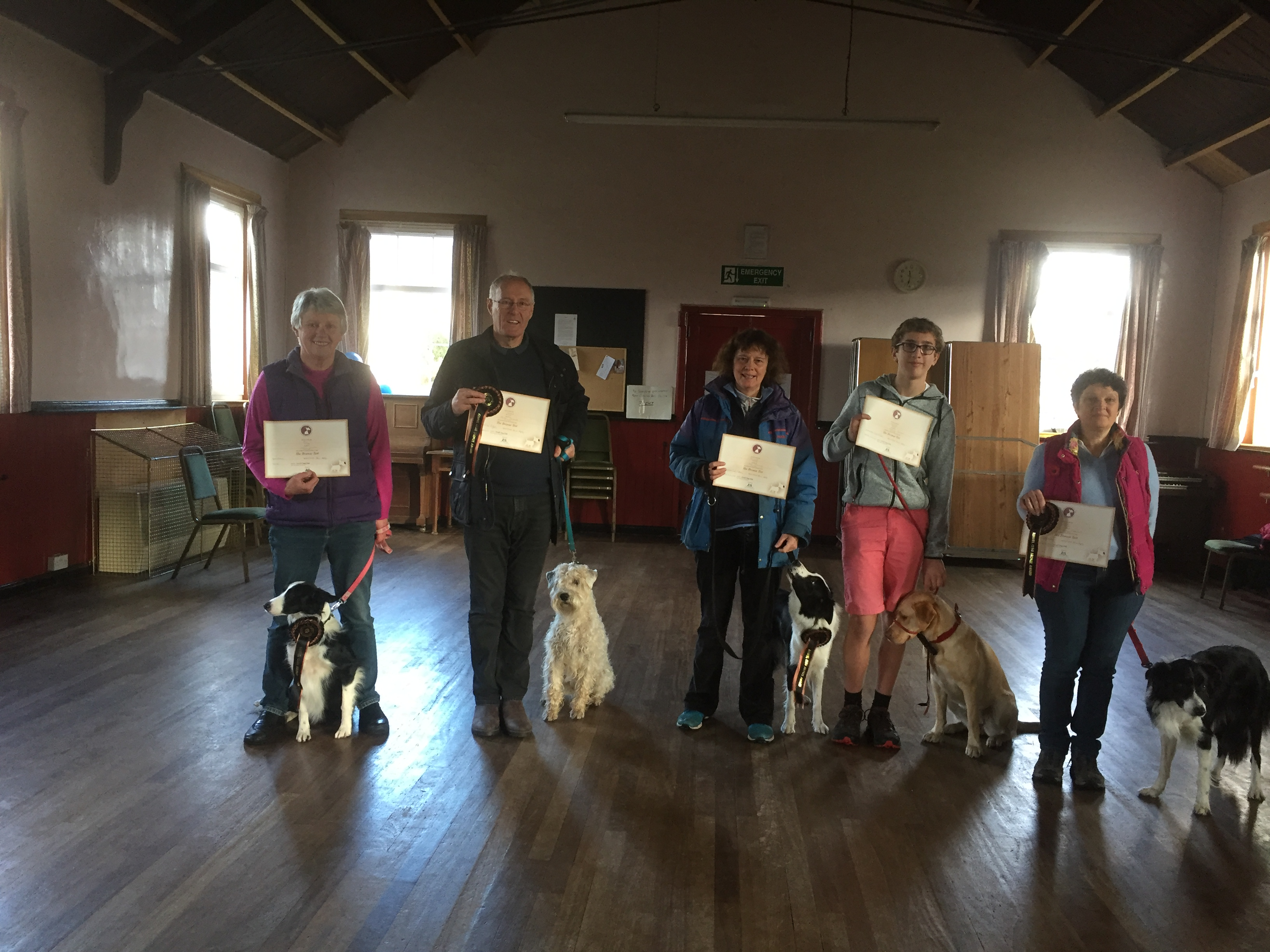 Kennel Club Good Citizen BRONZE November 2018 Diane with Fly, Brian with Nuala, Liz with Minnie, Thomas with Korra and Alison with Rona