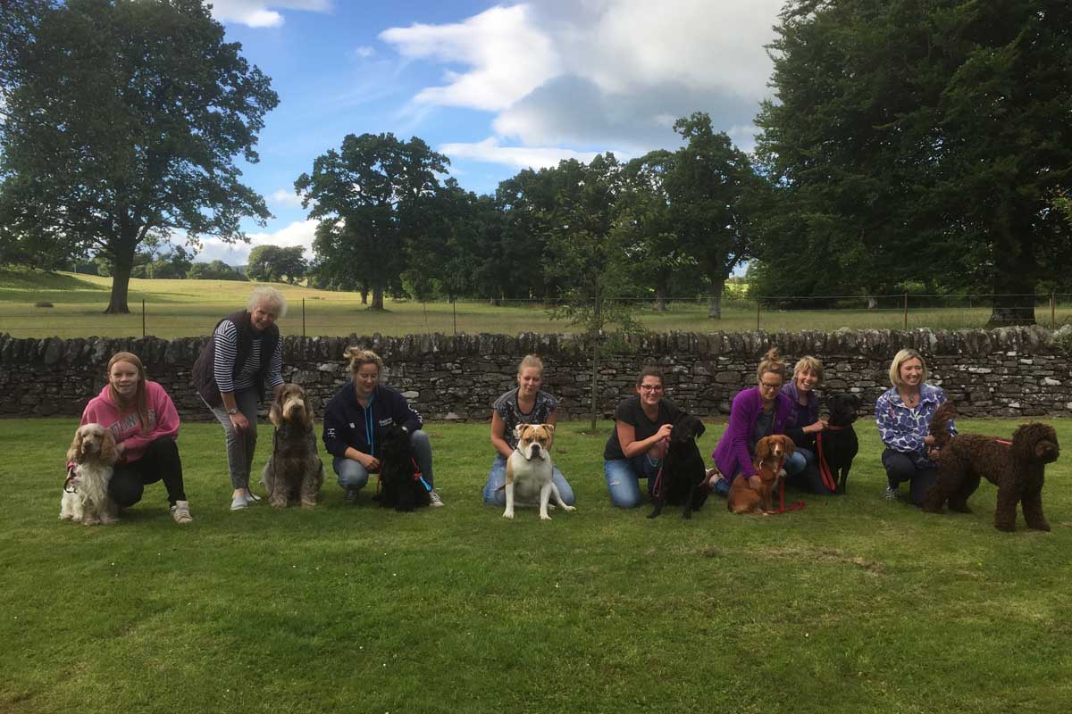 Kennel Club Good Citizen BRONZE awards, 11 July 2016 Emma with Bruiser, Judy with Lucca, Angela with Bob, Jaime with Teddy, Gillian with Poppy, Jenni with Esme, Liz with Tarkie, and Susan with Maisie.