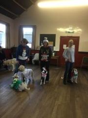 Fancy-dress-winners Liz & Minnie, Jaime & Teddy, Janice & Ruby & Nuala